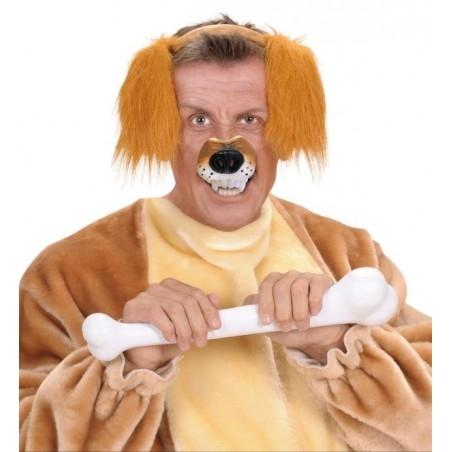 Kutya orr jelmezhez