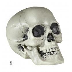 Műanyag koponya 21 cm