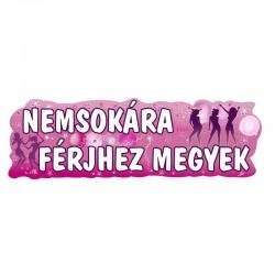 Lánybúcsú parti füzér Nemsokára Férjhez Megyeki felirattal 90 cm x 27 cm