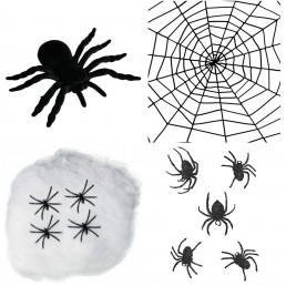 Pókháló, Pók