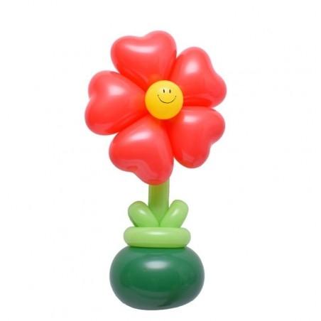 lufi virág ajándék